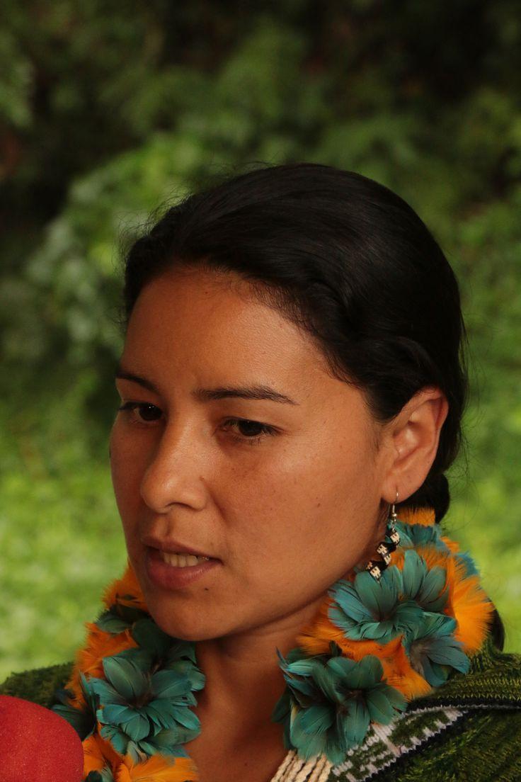 Resultado de imagem para jera guarani